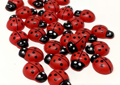 9.ladybirds.modified